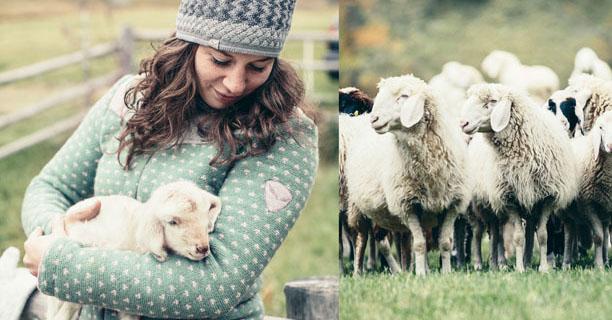 Salewa mouton