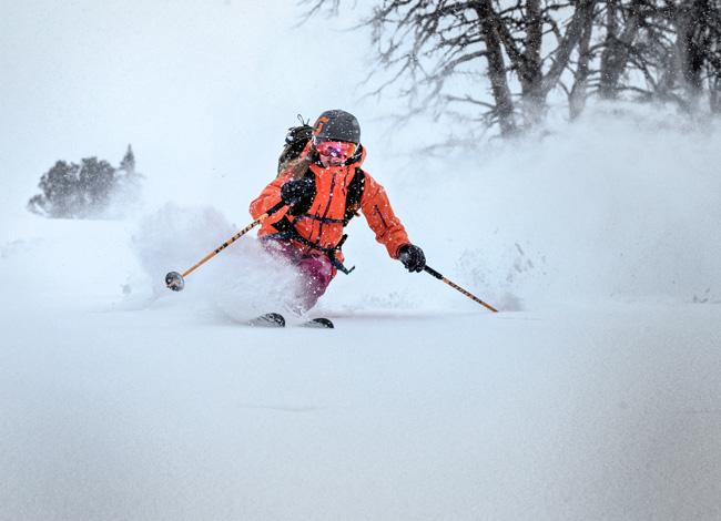 Skis-femme-2017