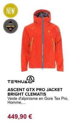 ascent gore tex pro Ternua