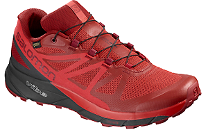 salomon sense ride gtx rouge