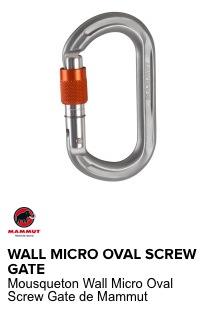 mammut mousqueton wall micro