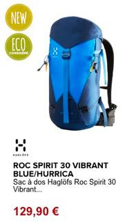 Haglofs roc-spirit