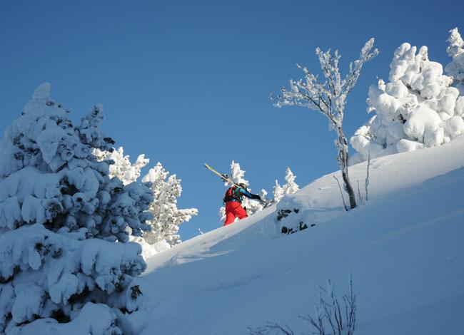 ski-de-randonnée-top