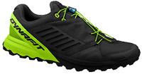 chaussures de trail test dynafit alpine pro